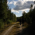 Wildberrycamp 2014